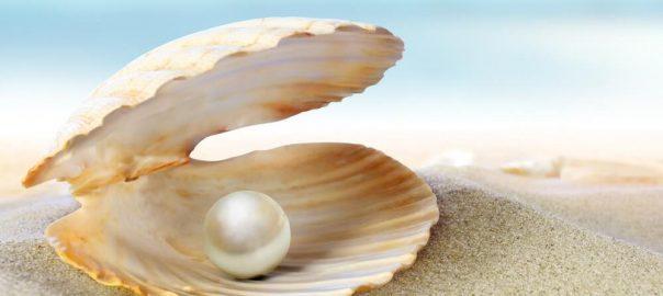 Tipos de pérolas: Shell? Água doce? Conheça as variedades.